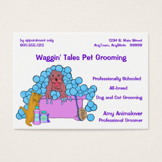 Dog And Cat Grooming Business And Appointment Card