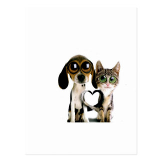 Dog and Cat in Love Postcard