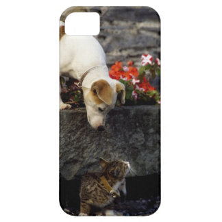 Dog and cat iPhone SE/5/5s case