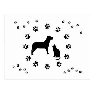 Dog and Cat Postcard