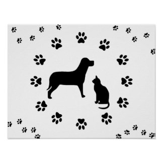 Dog and Cat Poster