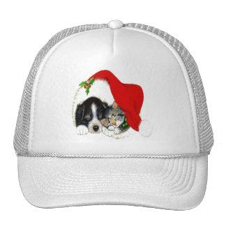 Dog and Cat Sharing Santa Hat