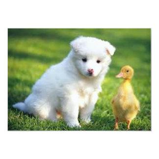 Dog and Duck Invitation
