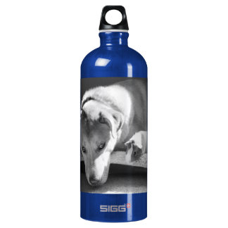 Dog and Guinea Pig Aluminum Water Bottle