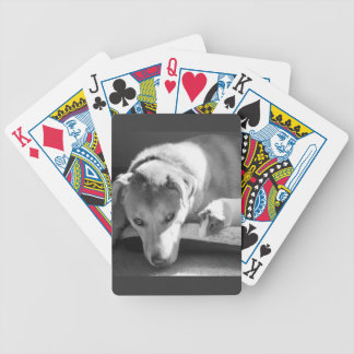 Dog and Guinea Pig Bicycle Card Bicycle Poker Cards
