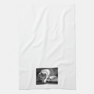 Dog and Guinea Pig Kitchen Towel