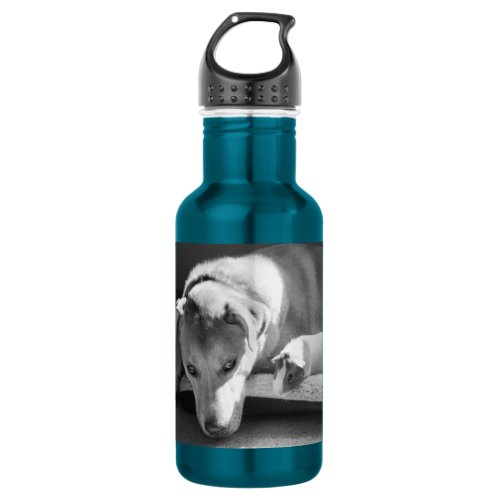 Dog and Guinea Pig Water Bottle