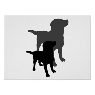 Dog And His Shadow Print. Poster