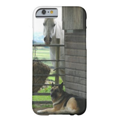 Dog and horse at ranch in Menton, France Barely There iPhone 6 Case