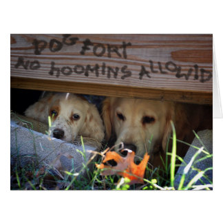 Dog and Puppy in Dog Fort Card