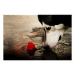 Dog and Red Rose Poster