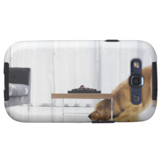 Dog and table samsung galaxy s3 covers