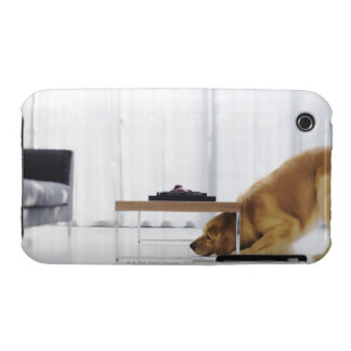 Dog and table iPhone 3 Case-Mate case