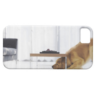 Dog and table iPhone 5 covers
