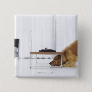 Dog and table pinback button