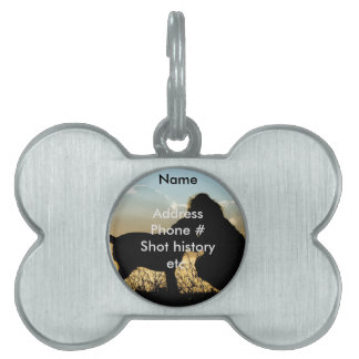 Dog and Woman in Sunset Pet ID Tag