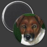 Dog Art - Jack Russell Terrier - Otis 2 Inch Round Magnet