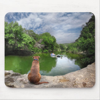 Dog at Barton Creek - Austin Texas Mouse Pad