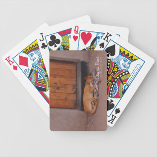 Dog at Rest Bicycle Playing Cards