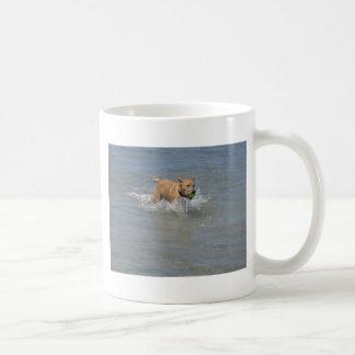 Dog at the Beach Classic White Coffee Mug