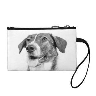 dog change purses