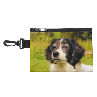 Dog Accessories Bag