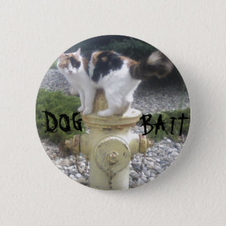 Dog Bait Kitty on a Fire Hydrant Pinback Button