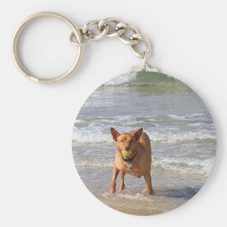 Dog & ball at beach keychain