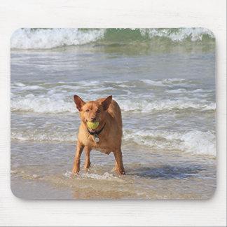 Dog & ball at beach mouse pad