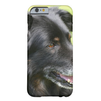 dog barely there iPhone 6 case