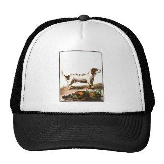 Dog - Basset Hound Trucker Hat