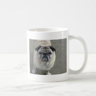 dog beach 925 2011 056 classic white coffee mug