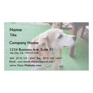 Dog Beautiful Business Card