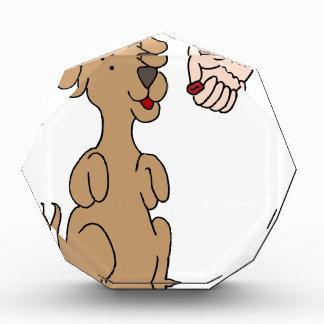 Dog Begging Treat Acrylic Award