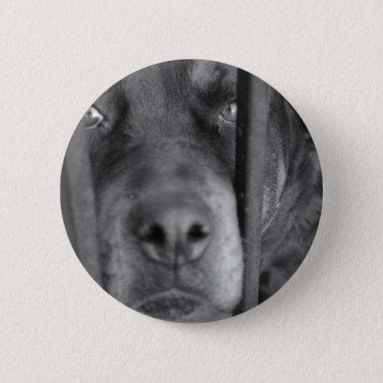 Dog behind Bars Button
