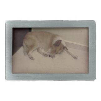 dog rectangular belt buckle