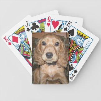 Dog Bicycle Card Deck