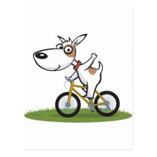Dog Biker Postcard