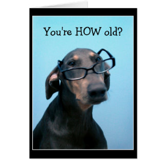 Dog birthday funny greeting card