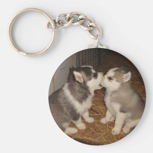 dog biting dogs mouth basic round button keychain