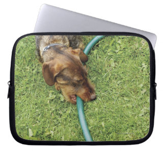 Dog biting on hose on grass and Dandelion leaves Computer Sleeve