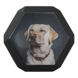dog black bluetooth speaker