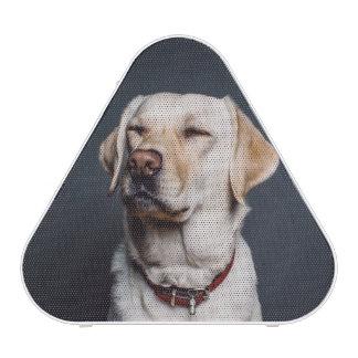 dog bluetooth speaker