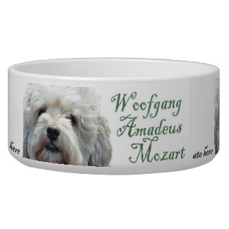 Dog bowl with humorous Mozart wording