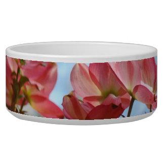Dog bowls Pink Dogwood Flowers Floral gifts