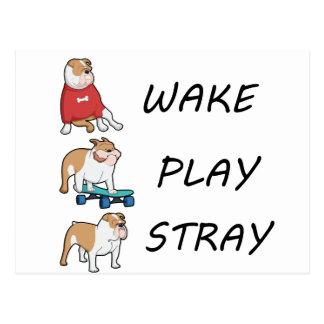 Dog Bulldog WAKE PLAY STRAY Postcard