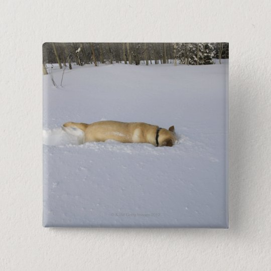 Dog burrowing in snow pinback button