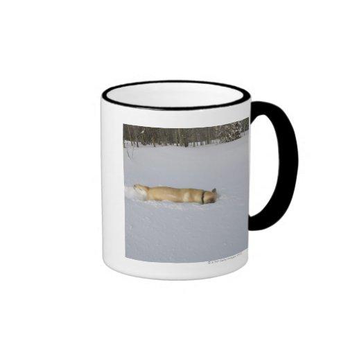 Dog burrowing in snow ringer mug