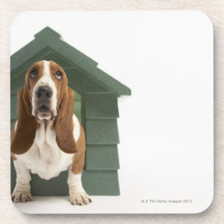 Dog by doghouse beverage coaster
