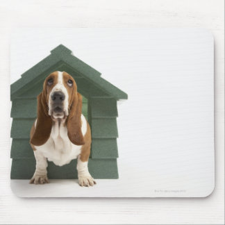 Dog by doghouse mouse pad